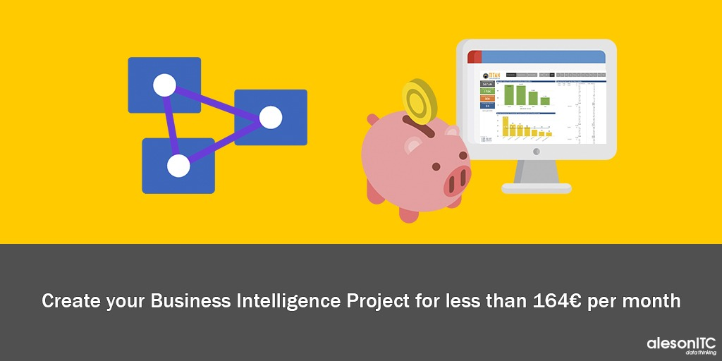 Business Intelligence Low Cost